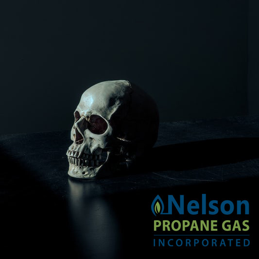 How To Avoid A Nightmare On Your Street: Propane Safety Basics - Nelson Propane