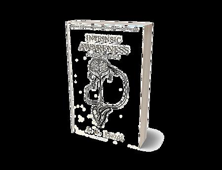 Intrinsic Awareness Cover.jpg