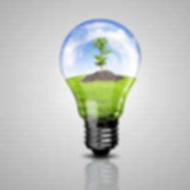 nelson-premier-energy-light-bulb-and-a-plan-36441958.jpg