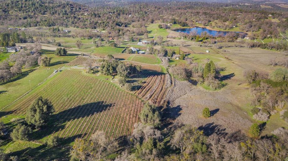 Omo Ranch Large (2).jpg