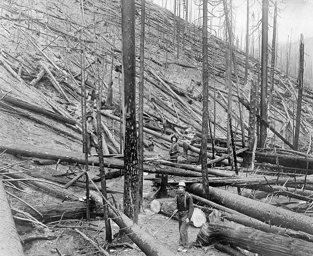 st_joe_idaho_fire_1910.jpg
