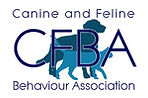 CFBA Image.jpg