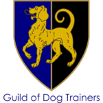 Guild Trainer Image.png