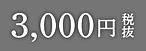 3000円.png