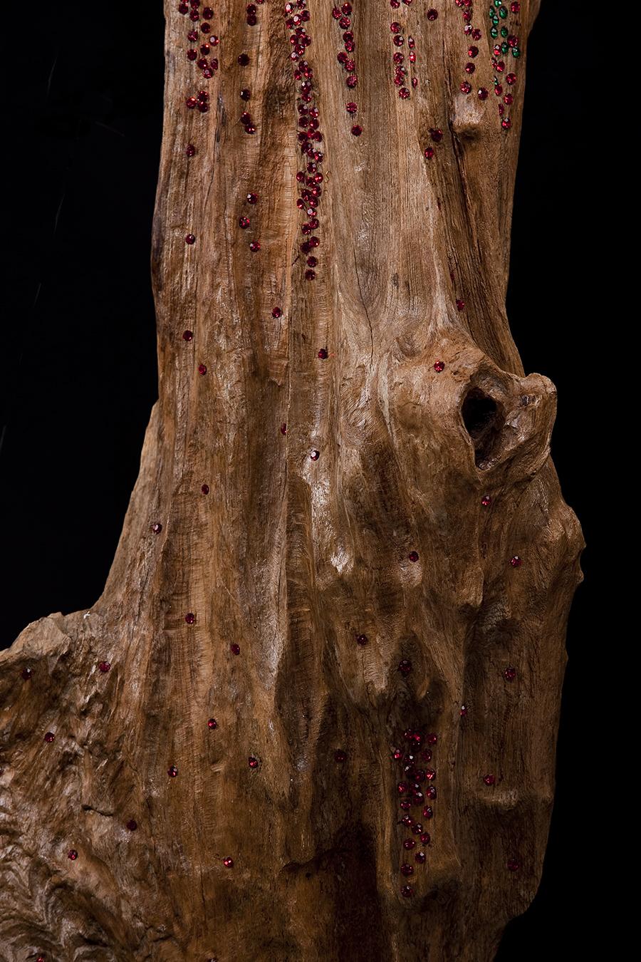 변화하다 (transforming)  old tree object_s2004