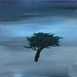 wind and sad 50x50cm    acrylic on canvas_2014