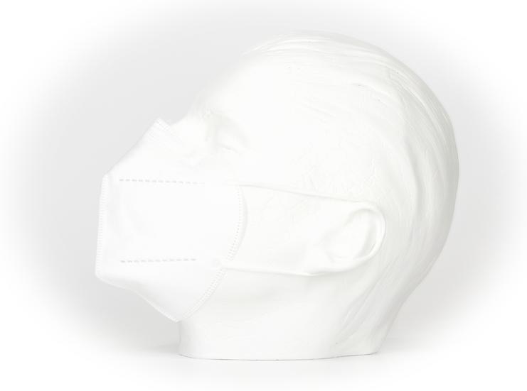 FFP 2 Masken (200 Stk.)