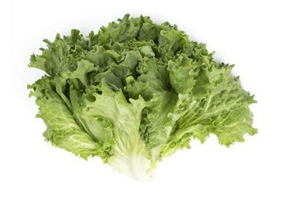 Green Leaf Lettuce, each