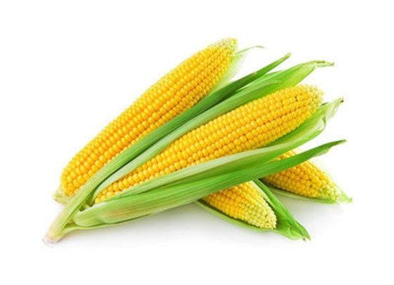 Fresh Corn, each
