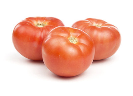Tomatoes, hot house, each