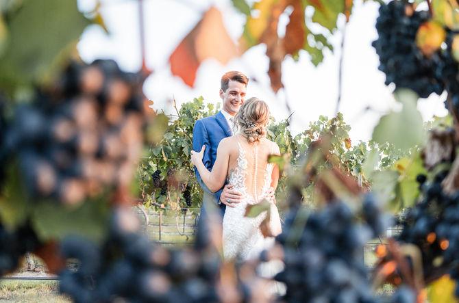 Dove Ridge Vineyards Wedding-24.JPG