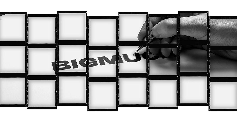 BIGMUCH Logo Banner.jpg