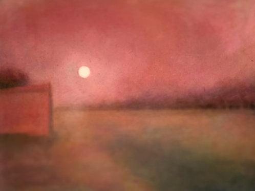'Pink Moon'