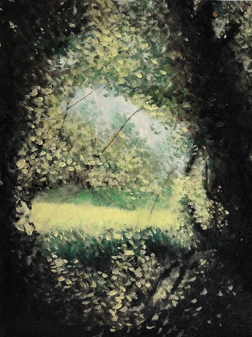 'Wood'