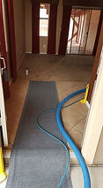 Phoenix Carpet Cleaners