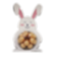 Funny_Bunny-removebg-preview.png