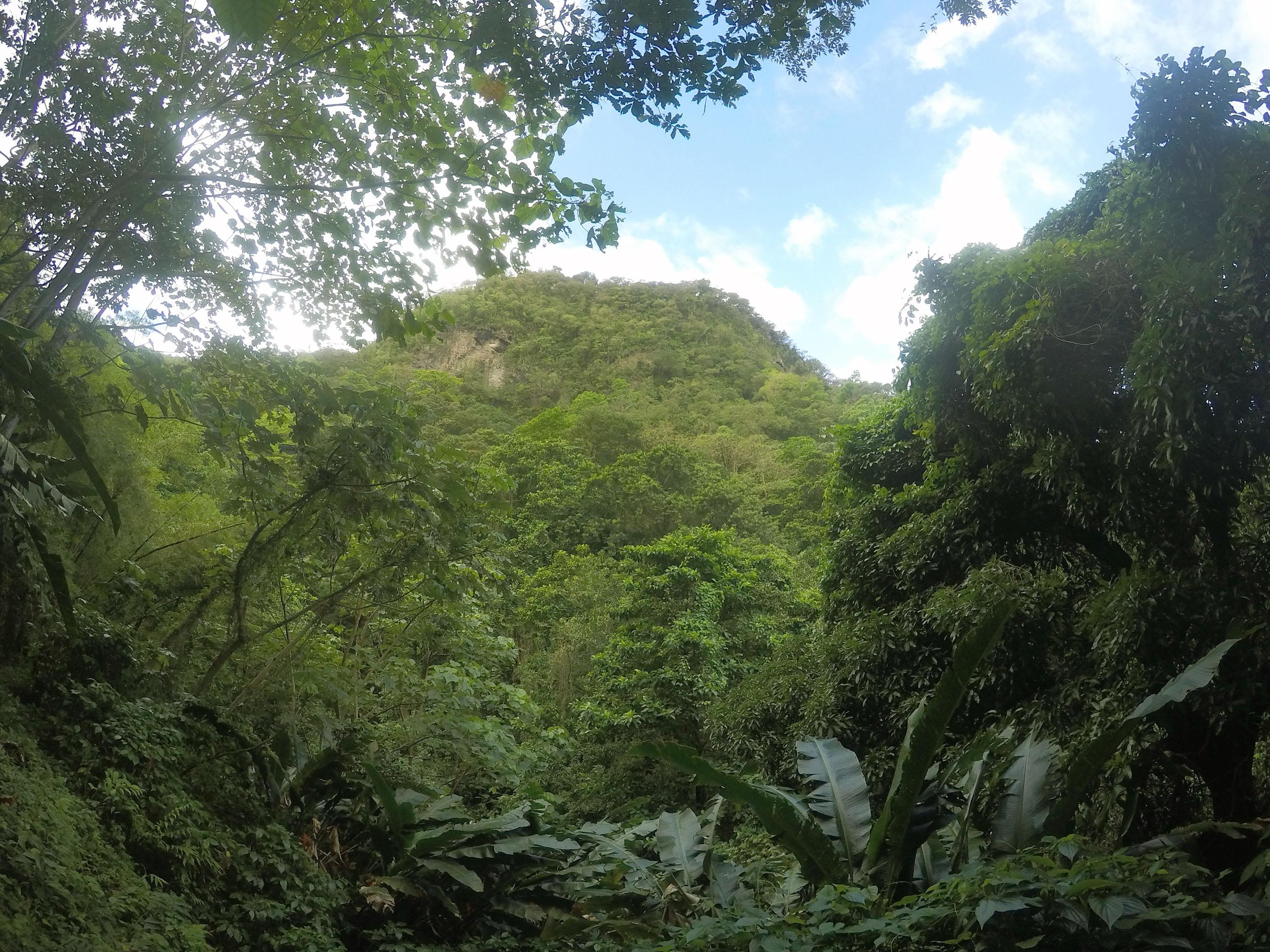 Martinique_2016_0030