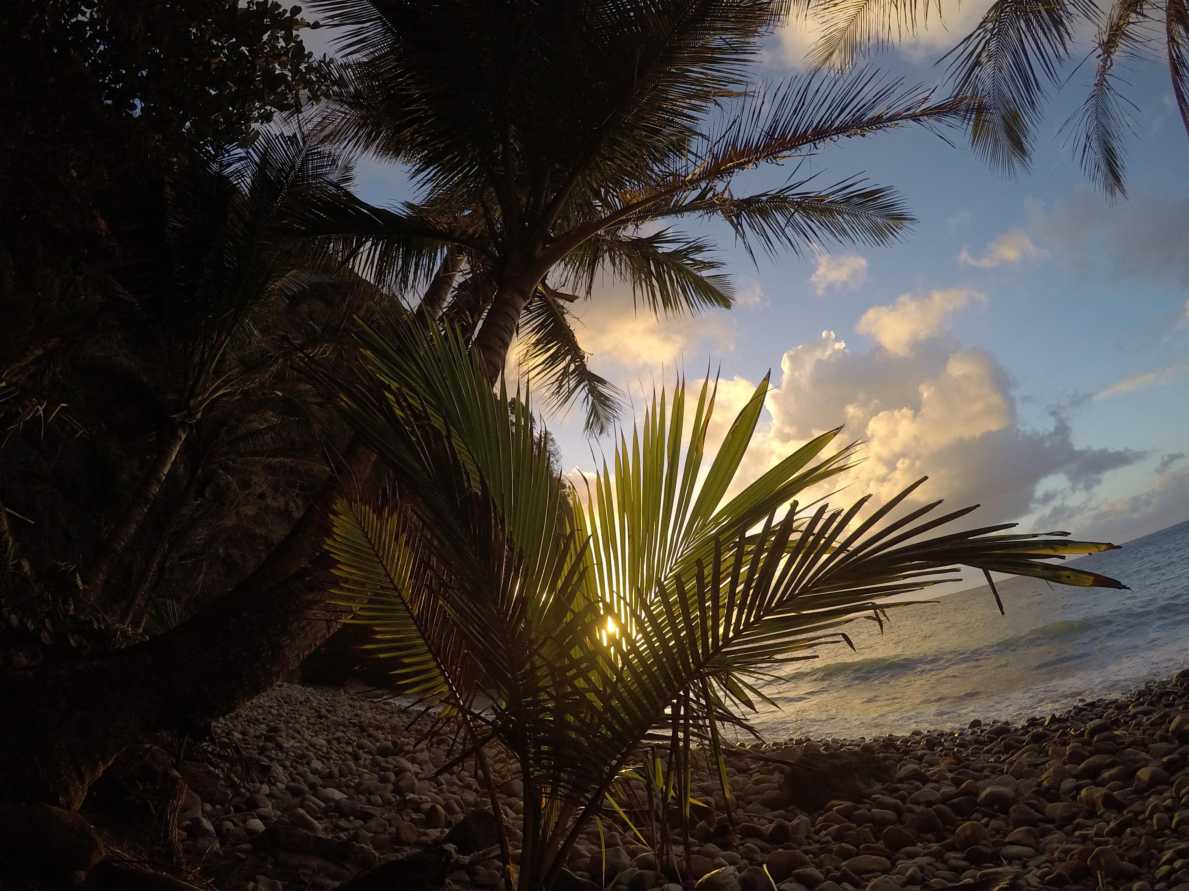 Martinique_2016_0026