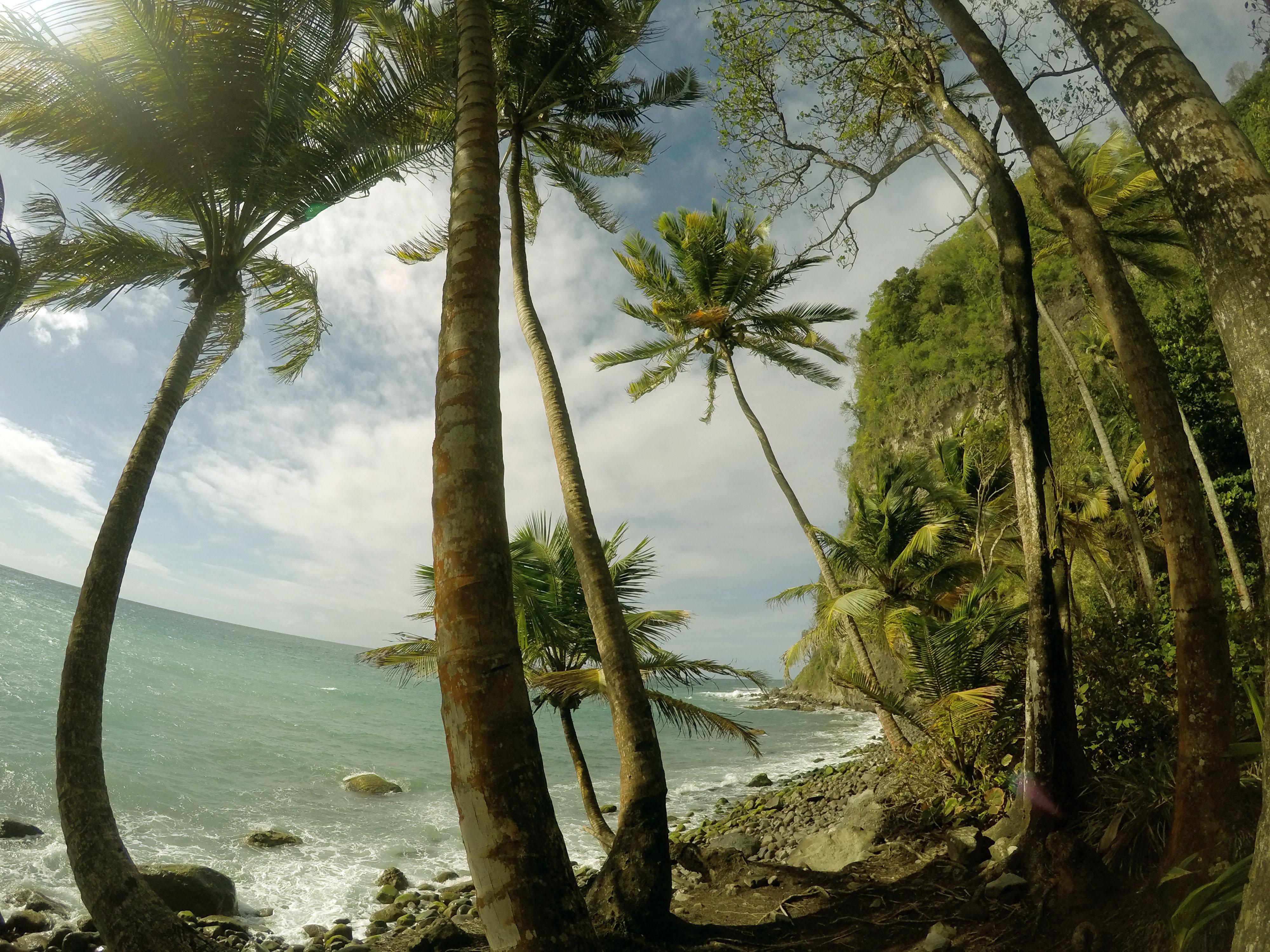 Martinique_2016_0024