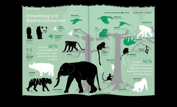 Entwaldung und Biodiversitätsverlust