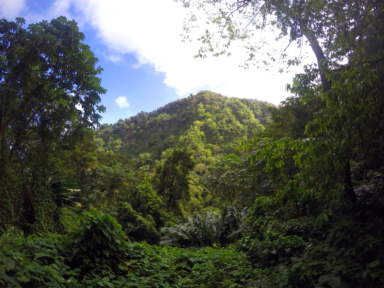 Martinique_2016_0034