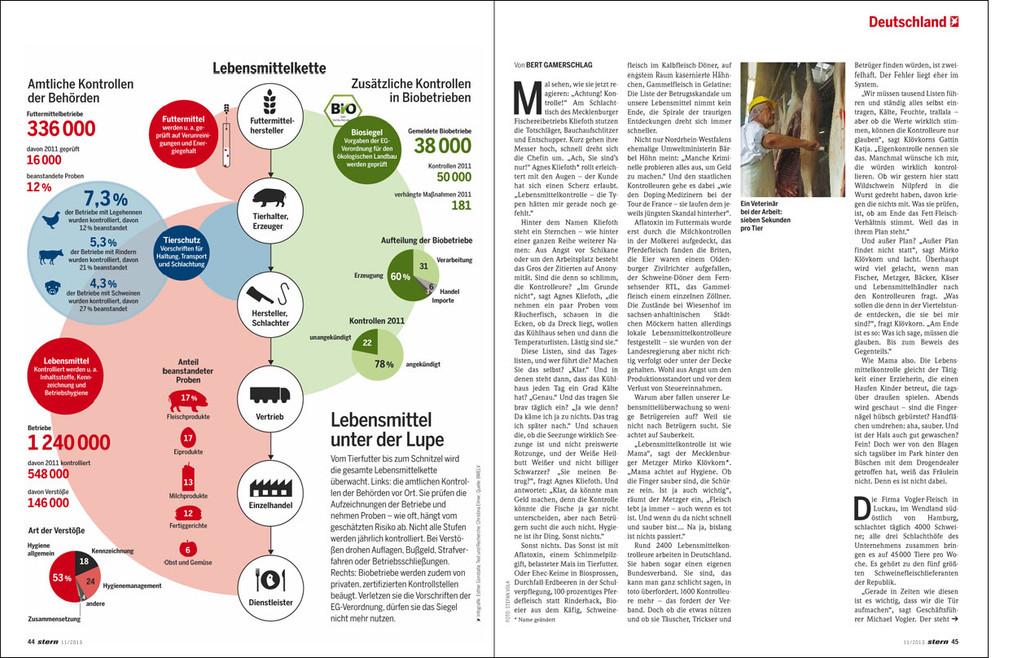 Stern Magazin, 2011
