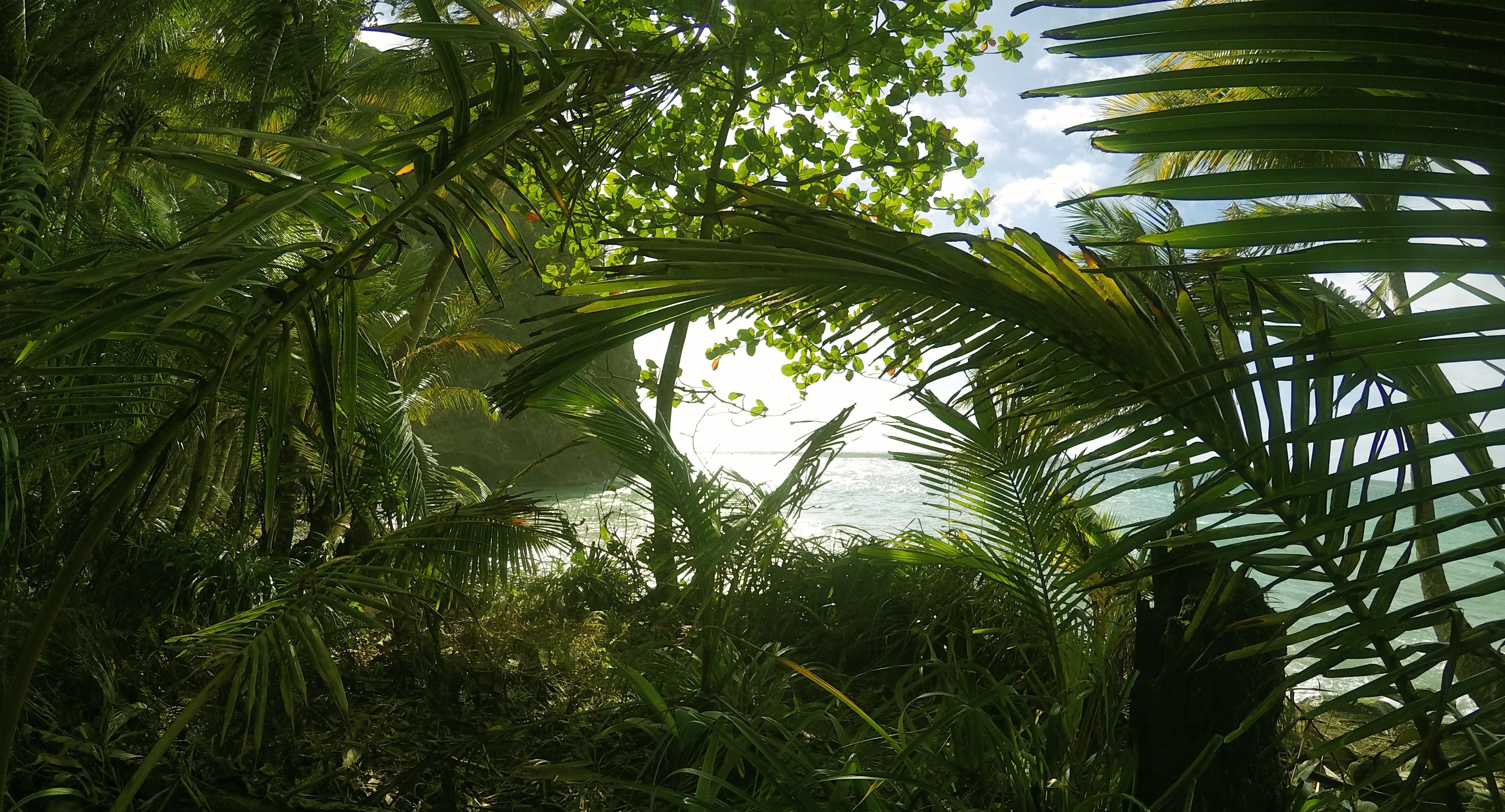Martinique_2016_0022