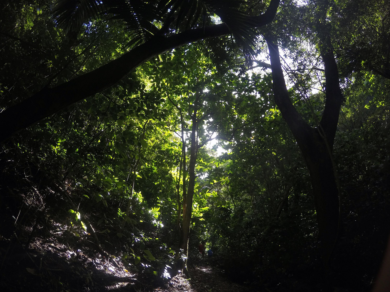 Martinique_2016_0029