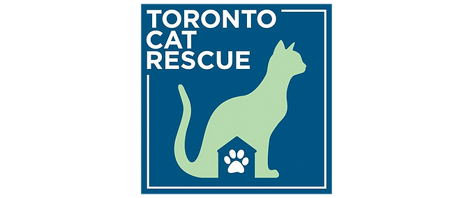 Toronto cat rescue.png