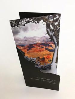 Diecut trifold brochure