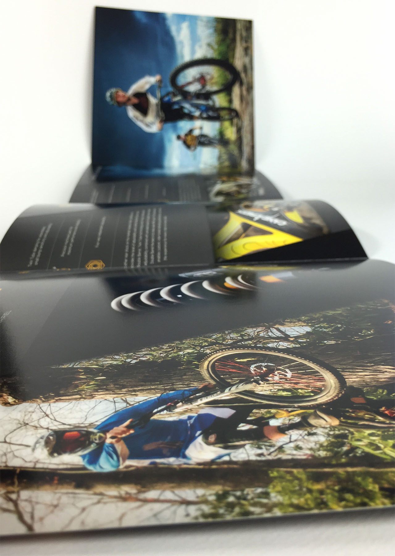 Gatefold Brochures