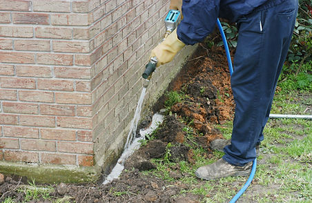 Termite treatment in South Florida
