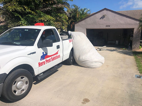 Attic cleaning Hero Pest Solutions