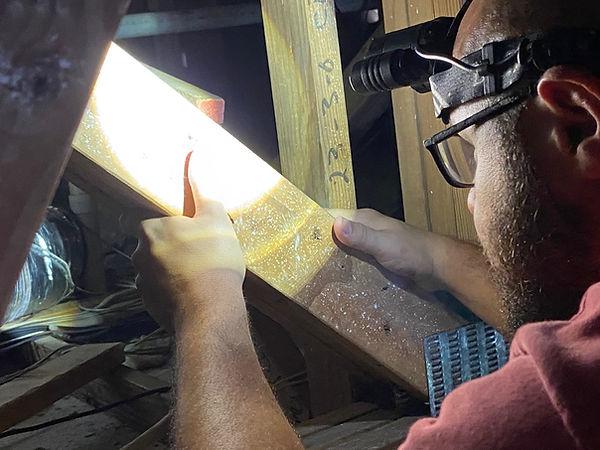 Termite WDO inspection Hero Pest Solutions
