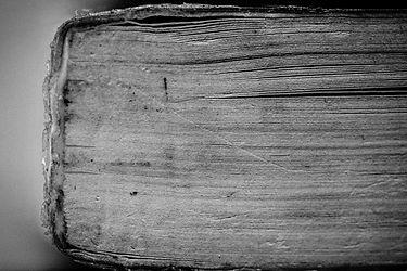 Bibliophobia - Finals3.jpg