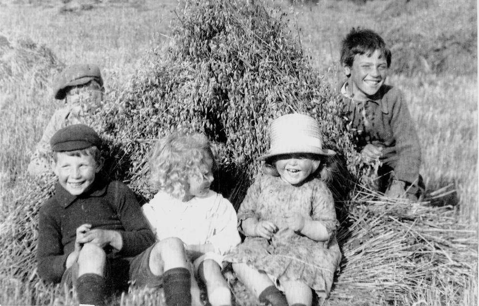 Children in corn shook