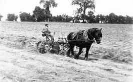 Turning hay