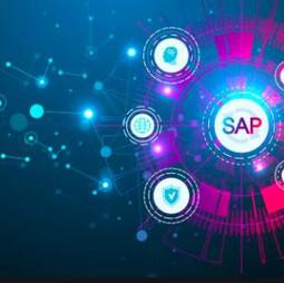 Consultor SAP HCM / HR – PY SR y SSR
