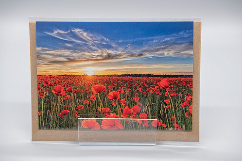 A6 Greetings Card Elmswell Suffolk Poppies