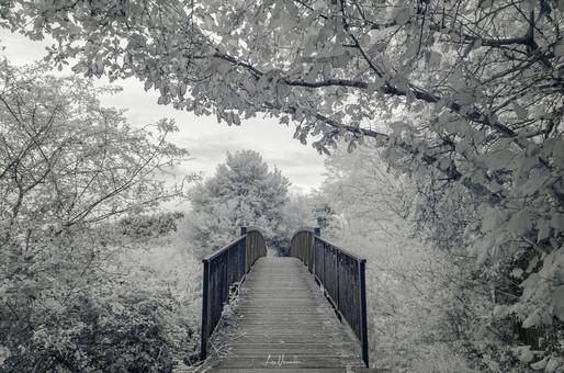 Cuckoo Bridge, Ely