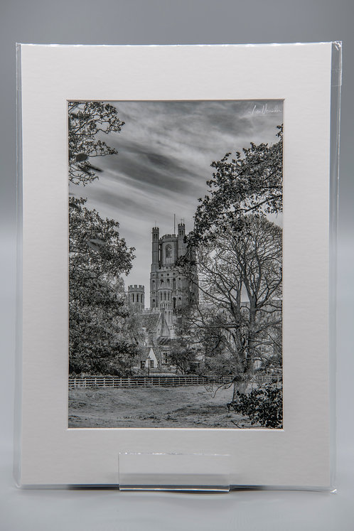 Ely Cathedral - Monochrome