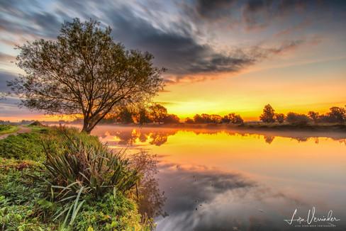 The Lone Tree at Sunrise