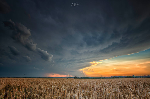 Summer Storm over Fields of Corn