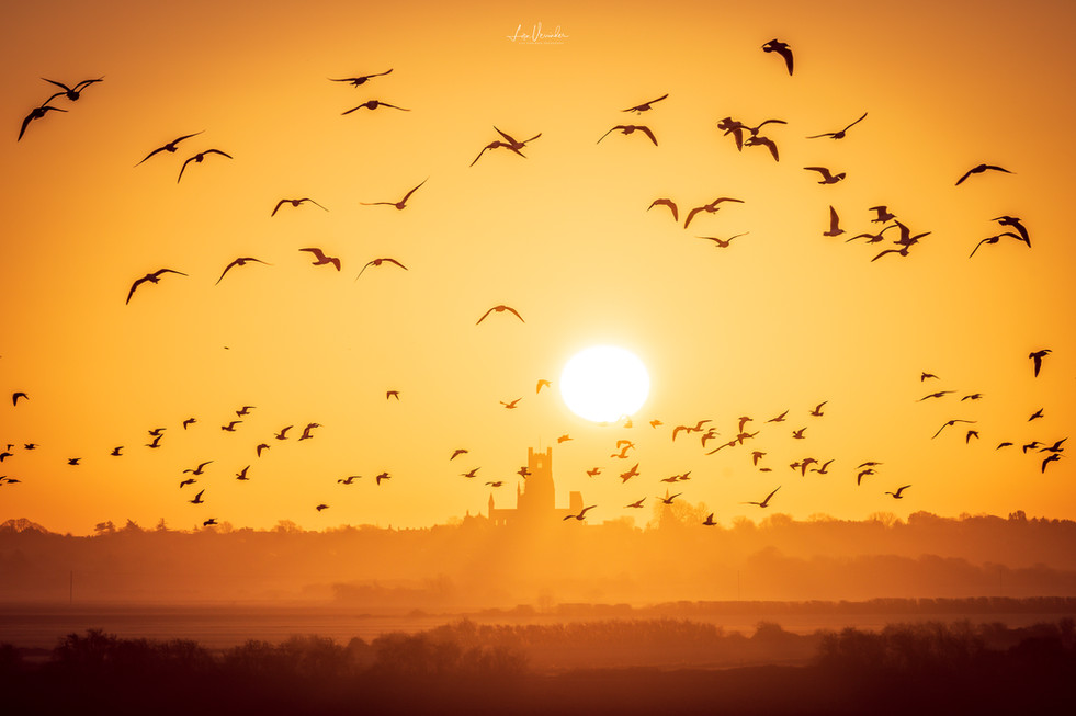 Ely Cathedral Sunrise