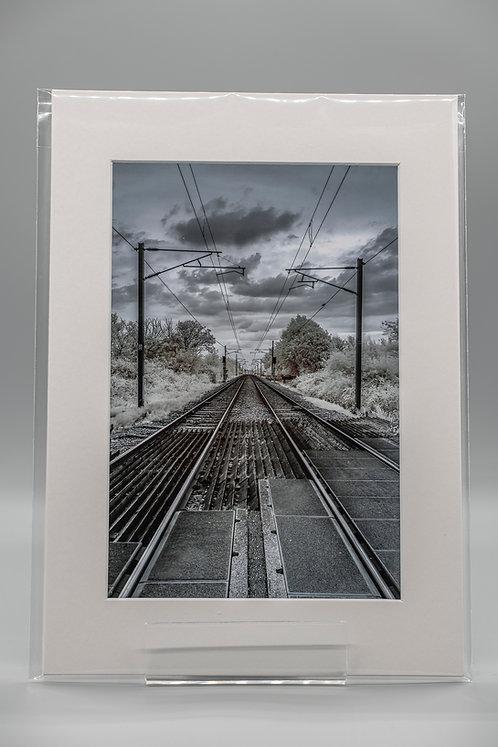 'Lines'
