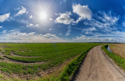 Fenland Sunny Skies