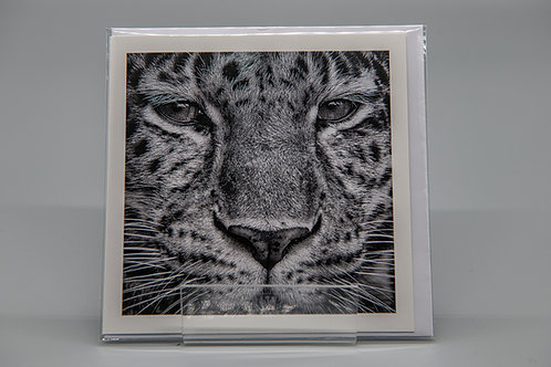 135mm Square Greetings Card Amur Leopard