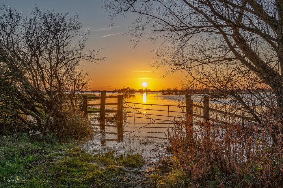 Ouse Washes Sunset