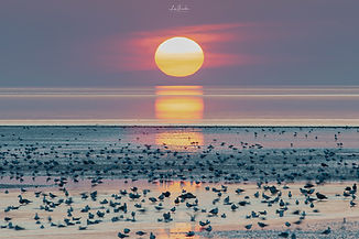 Heacham Sunset