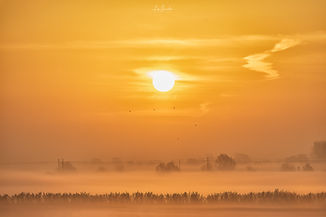 Fenland Misty Sunrise
